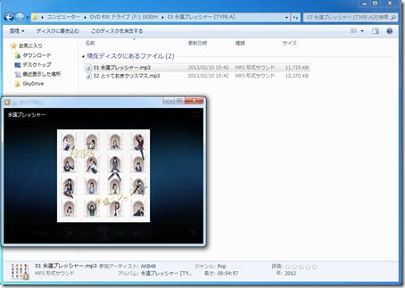CD_BRUN (14)